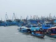 Vietnam y China dialogan cuestiones relativas a Golfo de Bac Bo