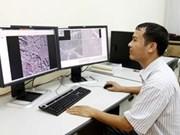 Ninguna huella del avión malasio en imágenes de satélite vietnamita
