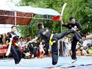 Binh Dinh acogerá festival internacional de artes marciales