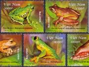 Vietnam emite sellos por proteger ranas arborícolas