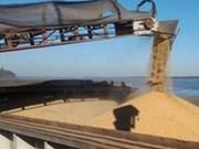 Vietnam, mayor importador de harina de soja de Argentina