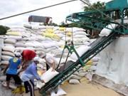 Vietnam, principal proveedor de arroz de Malasia