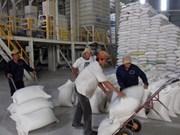 Agricultores de Kien Giang sombríos a pesar de abundante cosecha
