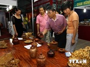 Participa Vietnam en Feria Internacional de Argelia