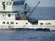 Remolcador chino choca frontalmente a buque vietnamita