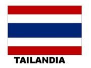 Gobierno militar de Tailandia anuncia proyecto electoral