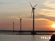 Energía verde de Vietnam en mira empresas danesas