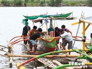 Filipinas: Evacuan a miles de personas por tifón Rammasun
