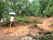 Sufre Vietnam grandes pérdidas humanas por Rammasun