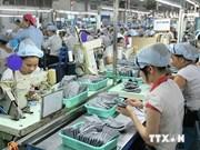Sigue tendencia alcista comercio Vietnam-Brasil