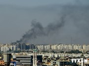 Vietnam refuerza evacuar coterráneos en Libia a través de Egipto