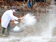 Detectan en provincia vietnamita presencia del virus H5N6