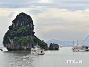 Ofrecen servicio de hidroavión para ruta Hanoi- Bahía Ha Long
