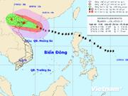 Kalmaegi azotará a localidades norteñas de Vietnam