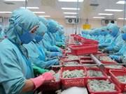 Vietnam rechaza medida de EE.UU. contra sus exportadores de camarón