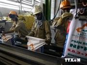 Analizan proyecto de ley de seguridad e higiene laboral
