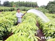 Alemania ayuda a Vietnam en protección de ecosistema forestal