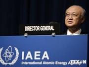 AIEA respalda a Vietnam en desarrollo de energía nuclear