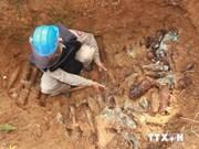 Asistencia alemana a desactivación de bombas en provincia centrovietnamita