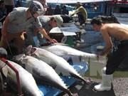 Solicitarán a Brasil levantar prohibición a productos acuícolas vietnamitas