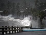Penetrará tifón Hagupit en Mar Oriental