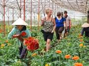 Planea Lam Dong atraer a cinco millones de turistas en 2015