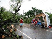 Filipinas: 35 muertos por tifón Jangmi