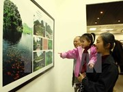 Concurso fotográfico sobre patrimonios de VN