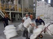 Vietnam gana contrato de exportar arroz a Filipinas