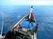 Construyen gran centro para la pesca en Khanh Hoa