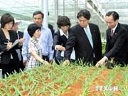 Vietnam interesado en experiencias niponas en desarrollo agrícola