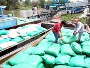 VFA: Reservar arroz es necesario para regular el mercado