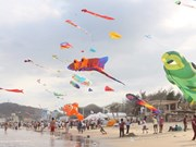 Nutrida participación en VI Festival Internacional de Papalotes