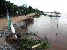 Delta del Mekong encara alto riesgo de erosión