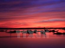Belleza de la Laguna Quang Loi