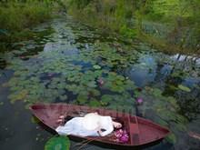 [Fotos] La belleza de los lirios de agua en Vietnam