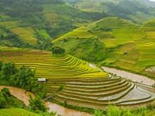 Seleccionan a Vietnam entre los 20 países más hermosos del mundo