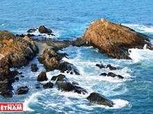 [Fotos] Belleza de la costa rocosa de Mong Rong en provincia norvietnamita de Quang Ninh
