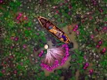 [Fotos] Colores de vida a través de lentes de jóvenes vietnamitas