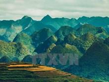 Paisajes majestuosos de zona montañosa de Ha Giang
