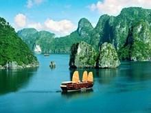 [Video] Vietnam atrae a más turistas de economías miembros de APEC