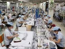 [Video] Sector vietnamita de confecciones-textiles buscan promover aplicación de  tecnología