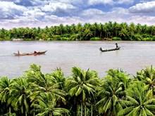 La tierra de los cocoteros Ben Tre busca atraer a más turistas