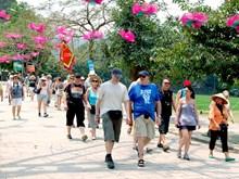 Otras seis naciones beneficiadas de expedición de visado electrónico de Vietnam