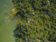 Belleza del complejo turístico de Trang An vista desde alto