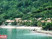 [Foto] Playa de Bai Rang, la combinación perfecta entre la armonía del bosque y el mar
