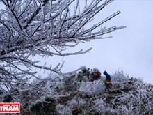 [Foto] Tierra helada y nublada