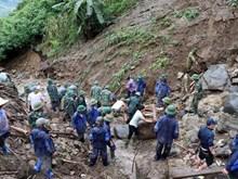 [Foto] Asciende número de desparecidos por deslizamientos de tierra en provincia vietnamita