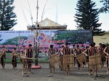 Festival honra valores de cultura gong en Tay Nguyen