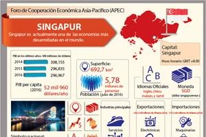 Singapur, uno de los miembros del APEC
